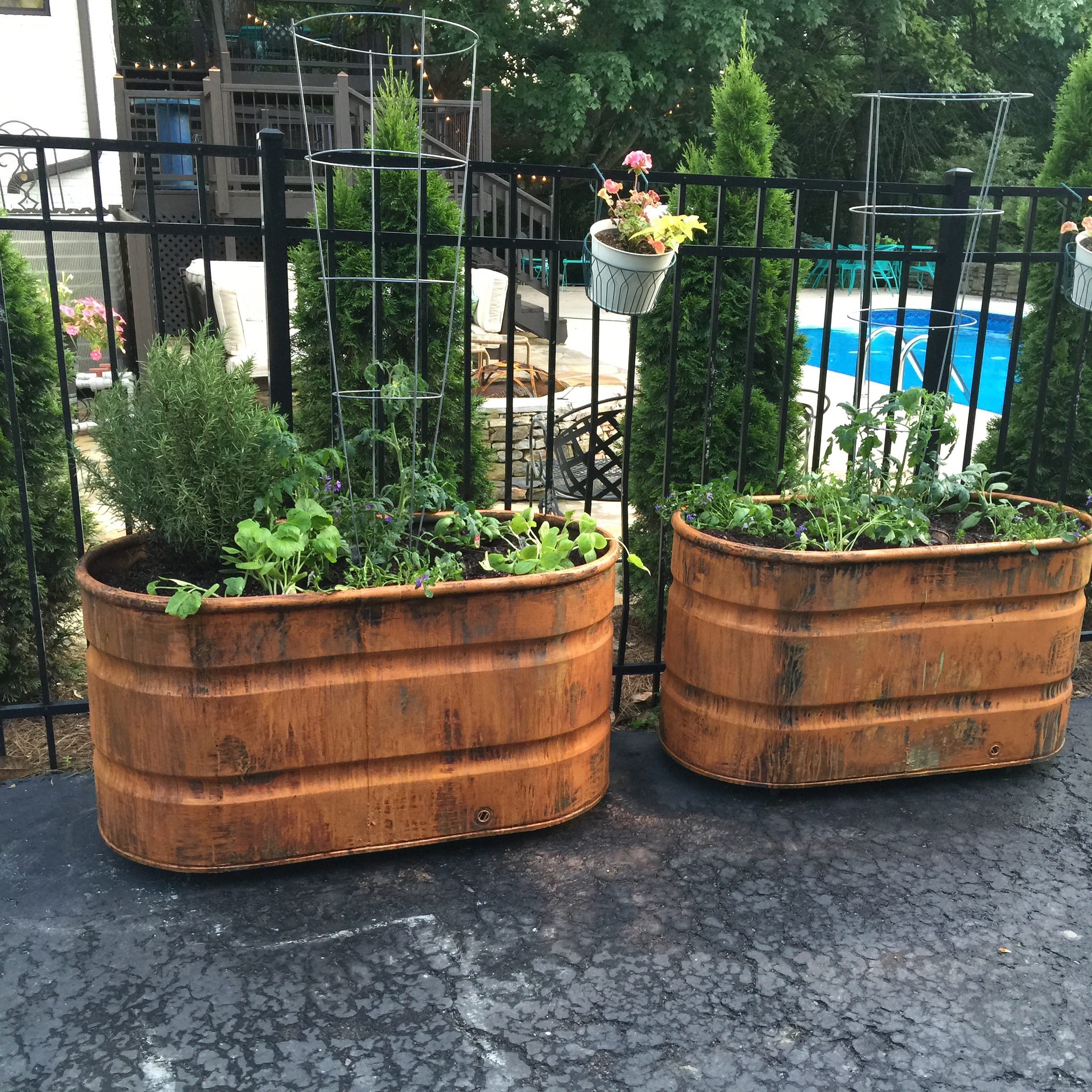 RUST PATINA CONTAINER GARDEN- BELLA TUCKER DECORATIVE FINISHES